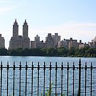 Summer in Central Park by Crystal Penick