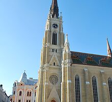 Cathedral Novi Sad by Jan Balca