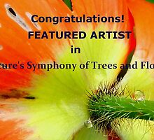 Featured Artist Banner for Nature's Symphony of Trees and Flowers by su2anne