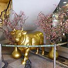 Golden cow by machka