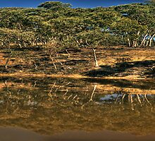 Australian Landscape 101 - Hill End , NSW Australia (40 Exposure Panorama) The HDR Experience by Philip Johnson