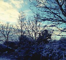 Winter Scene by Sorted3000