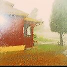 The Rain Series 2-1 - My Neighborhood by Lenore Senior