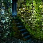 Castle steps by Barry James Roberts