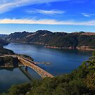 Lake Sonoma by RoySorenson