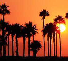 California Sunshine (Huntington Beach, California) by Brendon Perkins