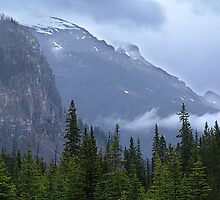 Kootenay In The Rain by Jann Ashworth