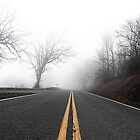 Foggy Trail: Shenandoah by dinjyz