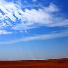 Texas Land by aRj Photo