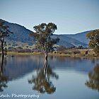 Reflections at Lake Hume by Kat36