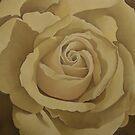 Cream Rose 1  by Martha Mitchell