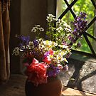 In the window's light by Sue Clamp