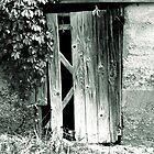 Cellar Door by shimschoot