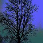 Hevey Tree by Steve Walser