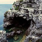 Flowerpot Island grotto by hummingbirds