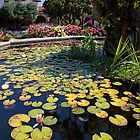 Mission Fountain Pond (San Juan Capistrano Spanish Mission, California) by Brendon Perkins