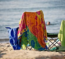 Beach Day Afternoon by phil decocco