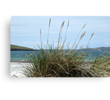 Atlantic Outlook - Seilebost Beach, Western Isles, Scotland Canvas Print