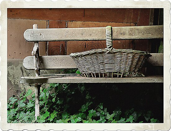 Bench of Memories - Wynstay - Mt Wilson NSW Australia by Bev Woodman