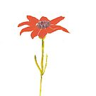card design: single flower by ArtLuver