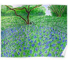 Spring Bloom spread Poster