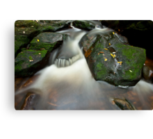 The Weeping Rock Canvas Print