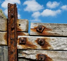 Rusted Timbers  by Susie Peek