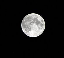 "Moon over Santa Cruz by Christine ""Xine"" Segalas"