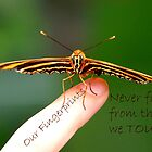 Our Fingerprints Never Fade From The Lives We Touch! - Tiger Butterfly NZ by AndreaEL