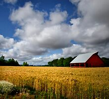 Ready For Harvest by Charles & Patricia   Harkins ~ Picture Oregon