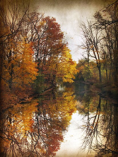 Autumn Serenity by Jessica Jenney