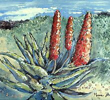 Aloes in the Garden by Marie Theron