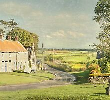 A Summer Evening in Newton Upon Rawcliffe by patrixpix
