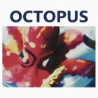 Octopus by Paul Scrafton