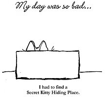 Secret Kitty Hiding Place, My Day Was So Bad... by Cameron Hampton