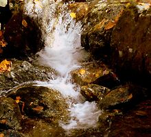 Mini Waterfall - A Brook at Crabtree Falls  by ctheworld