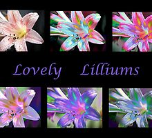 Lovely Lilliums by SharonD