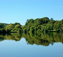 Mirror, Mirror  - Union Pond by christiane