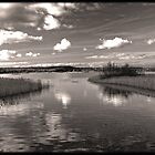 Chew Valley Lake by PShellard