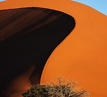 Curving Sands by Matthew Pugh