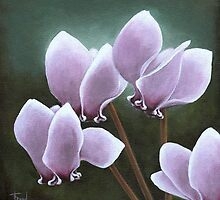 Cyclamen by tanyabond