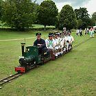 Train Full Of Morris Men by lynn carter