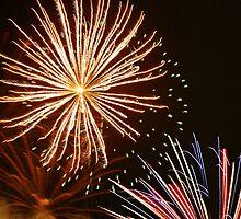 Fireworks by Linda Yates