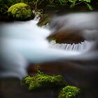 Panther Creek I by Tula Top