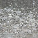 Rain Puddle by VixenFirepaw