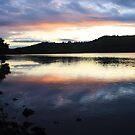 highlight at sunset ... by gail woodbury