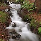 Antrona Valley, National Park (5) by jimmylu