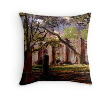 Sheldon Ruins Throw Pillow