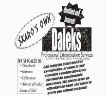 Daleks-Professional Services by Bluesly