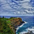 Kilauea Point by bodhikaiimagery